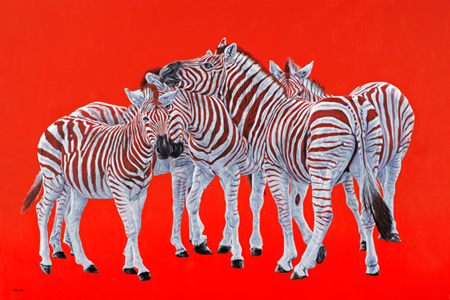 Five Zebras On Red
