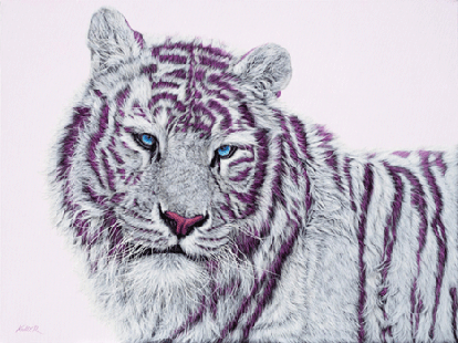 Tiger With Magenta