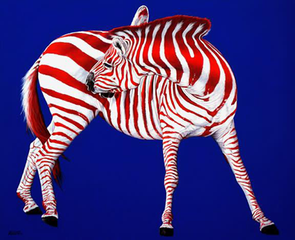 Zebra in red white and blue
